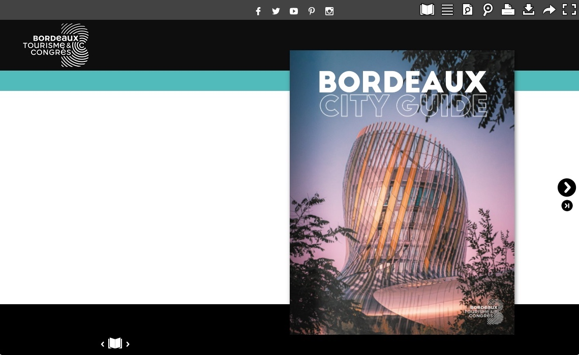 user custom theme publication example