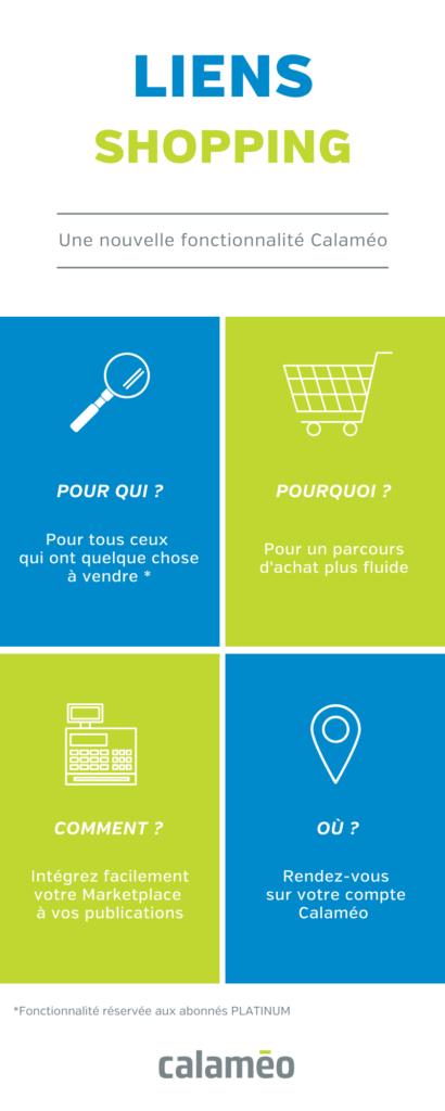 Cette infographie présente les liens Shopping et résume la fonctionnalité.