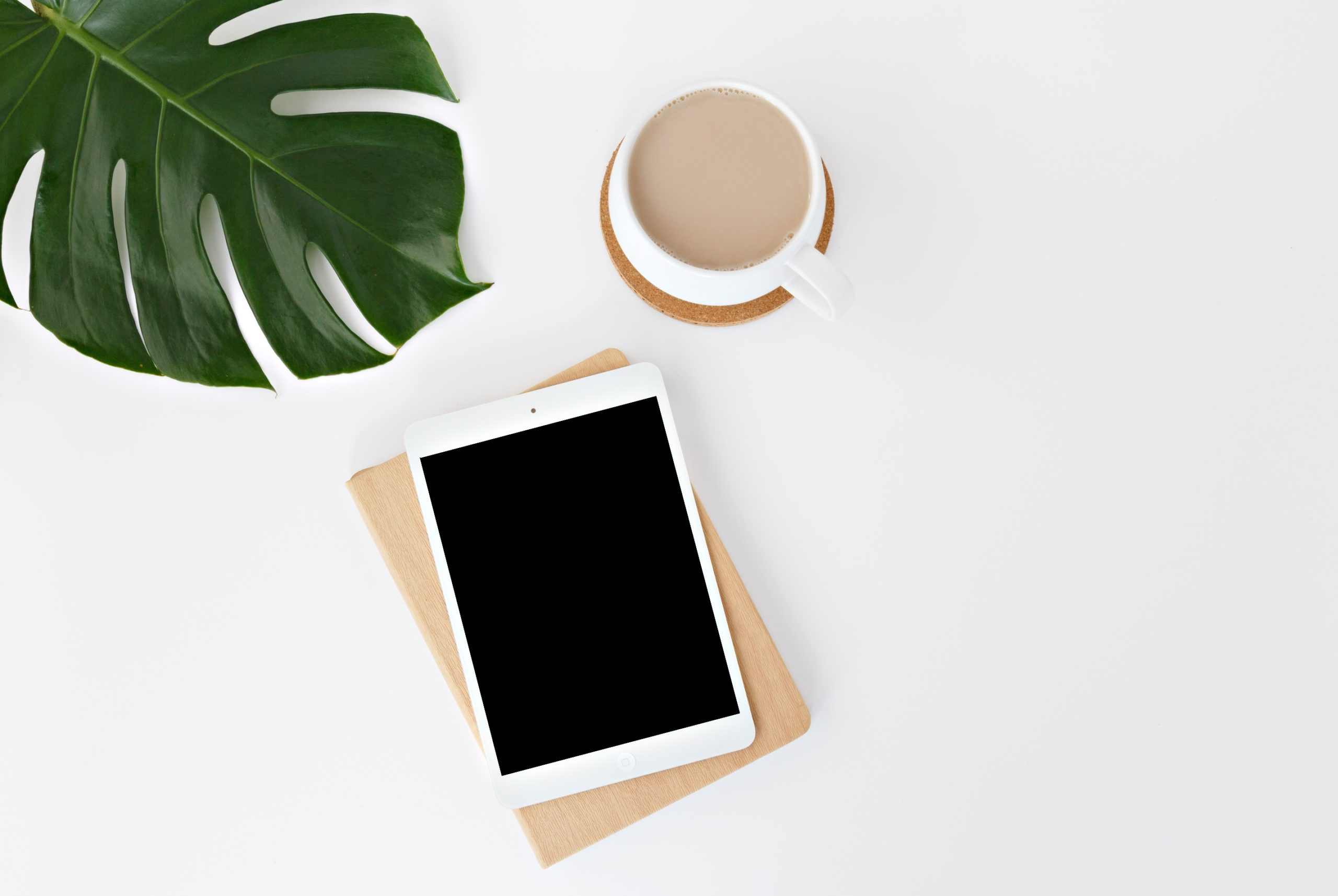 Publishing Trends 2020.Top 5 Digital Publishing Strategy Trends For 2020 Calameo Blog